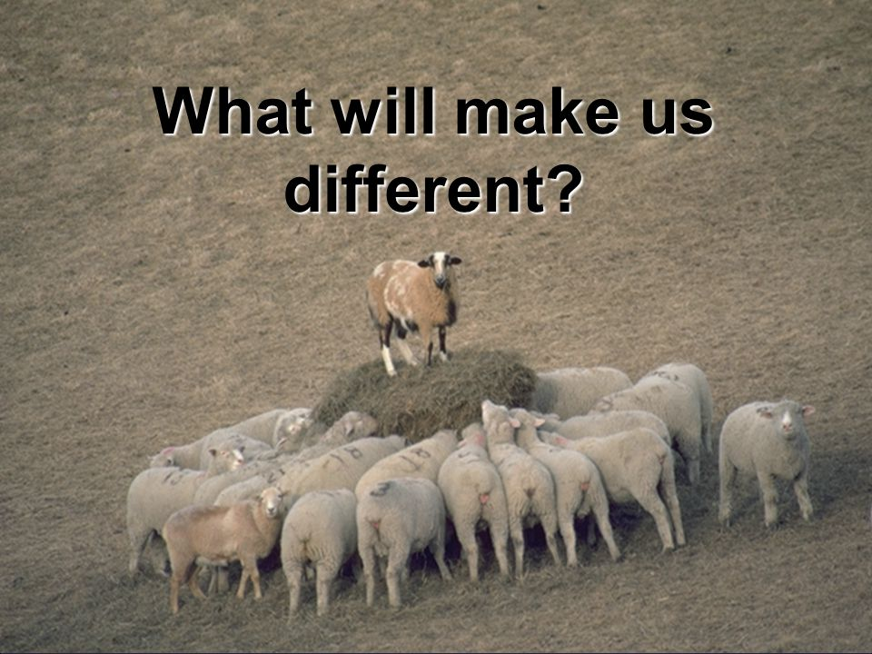 What will make us different?