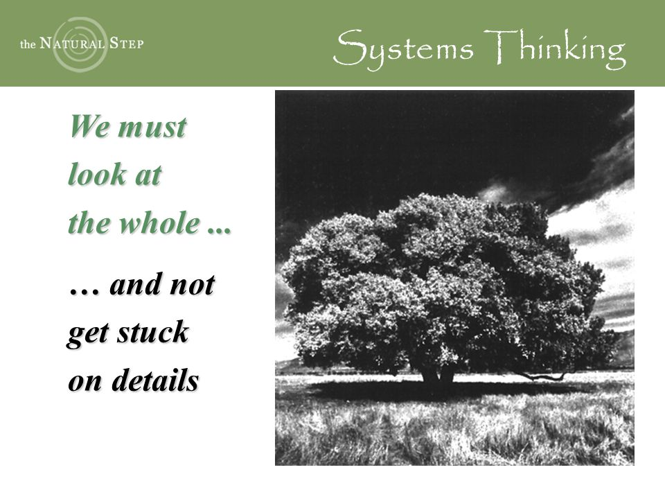 We must look at the whole... … and not get stuck on details Systems Thinking