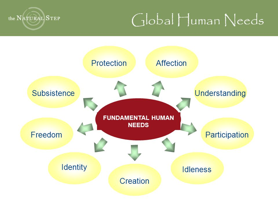 FUNDAMENTAL HUMAN NEEDS AffectionProtectionUnderstandingParticipationSubsistenceFreedom Identity Idleness Creation Global Human Needs
