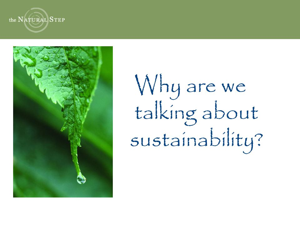 Sustainability Objective 3 Reduce and eventually eliminate our contribution to the ongoing physical degradation of Nature.