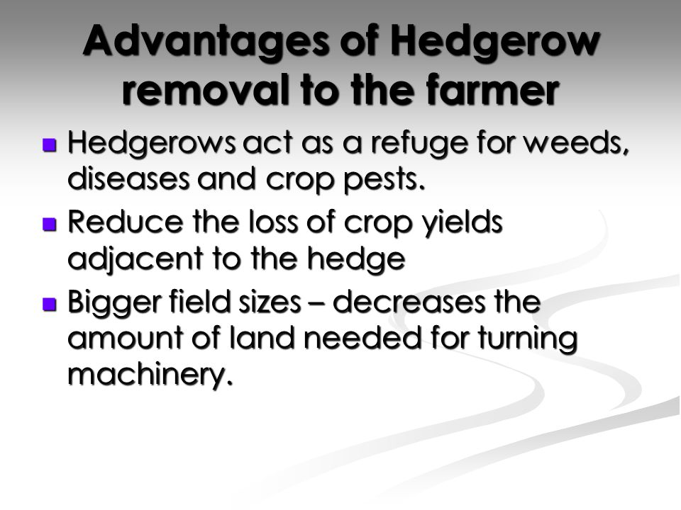 Advantages of Hedgerow removal to the farmer Hedgerows act as a refuge for weeds, diseases and crop pests.
