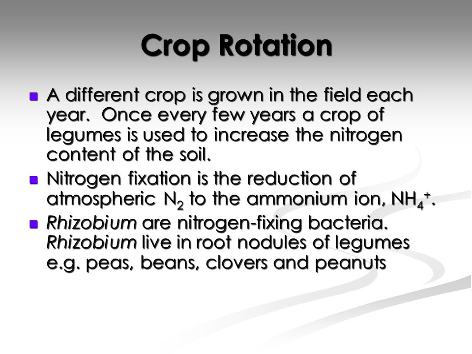 Crop Rotation A different crop is grown in the field each year.