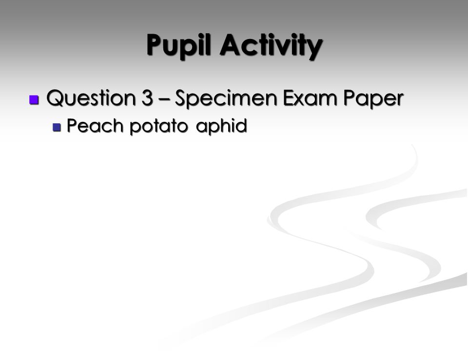 Pupil Activity Question 3 – Specimen Exam Paper Question 3 – Specimen Exam Paper Peach potato aphid Peach potato aphid