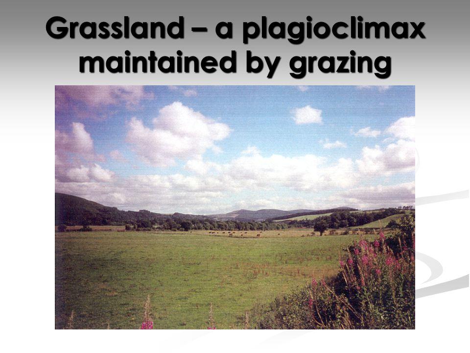 History of Organic Farming Organic farming can be split into two categories: Organic farming can be split into two categories: Natural form of farming.
