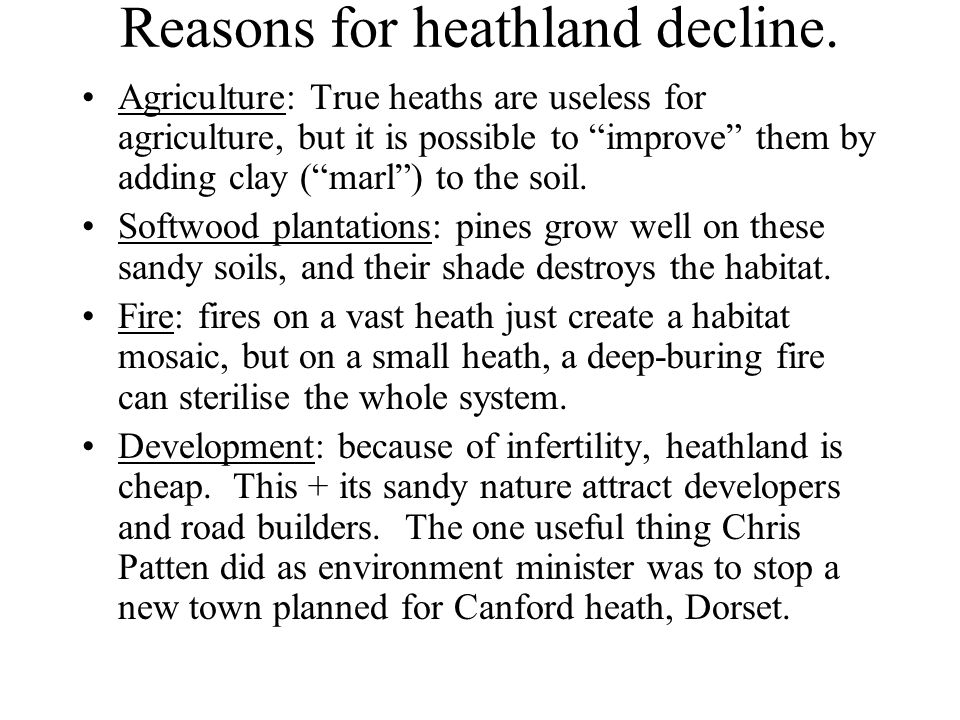 Reasons for heathland decline.