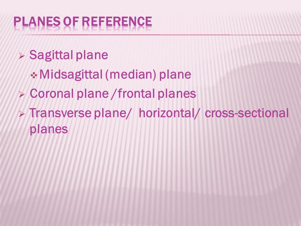  Sagittal plane  Midsagittal (median) plane  Coronal plane /frontal planes  Transverse plane/ horizontal/ cross-sectional planes