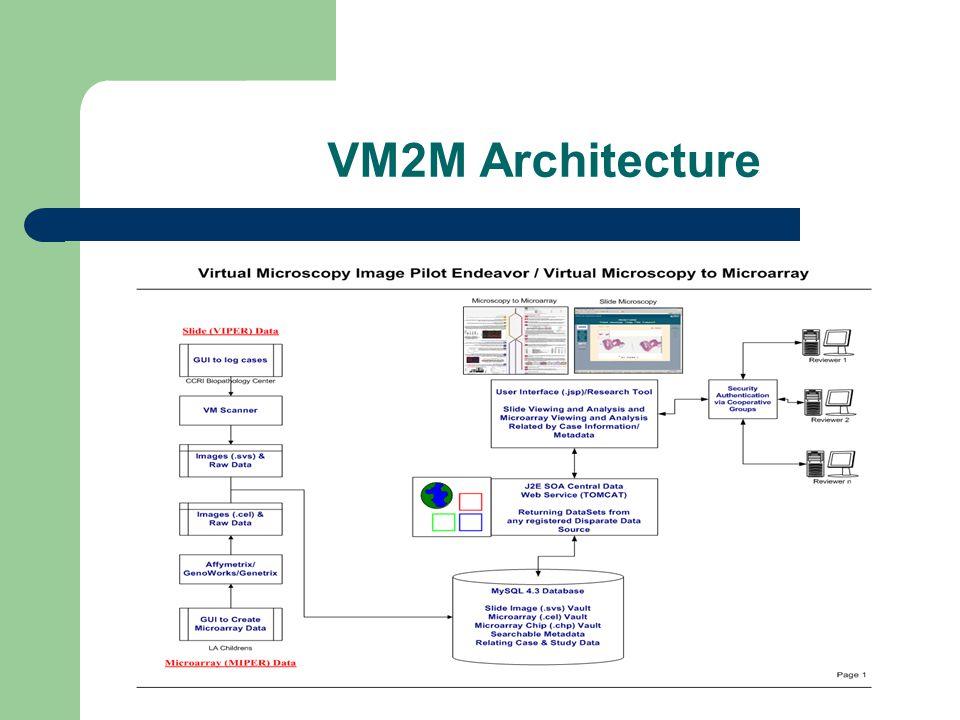 VM2M Architecture