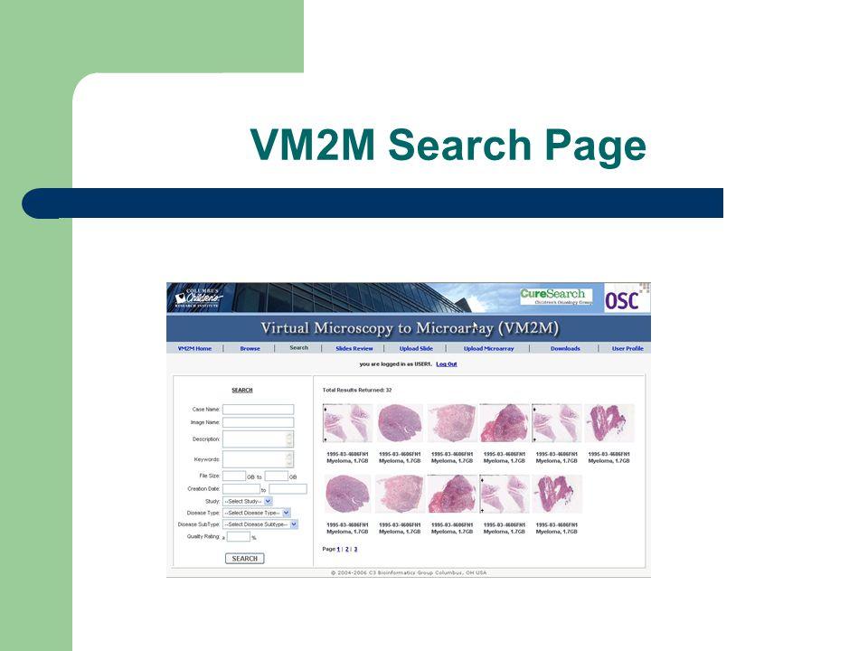 VM2M Search Page