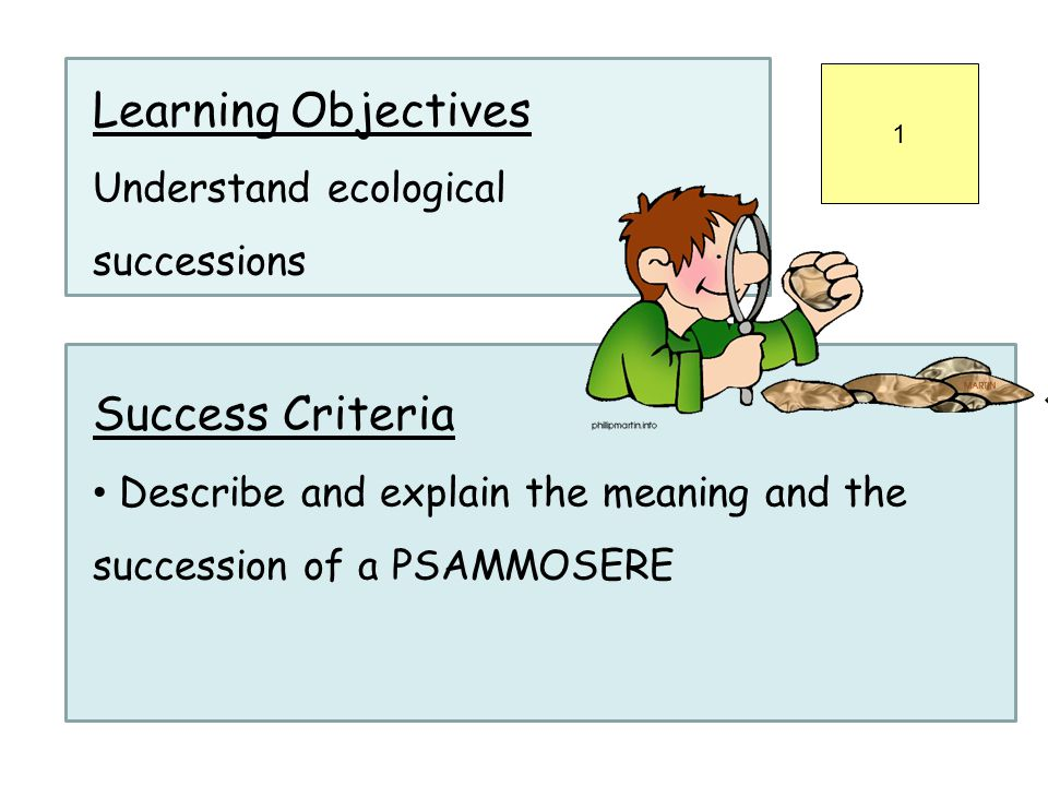 Learning Objectives Understand ecological successions Success Criteria Describe and explain the meaning and the succession of a PSAMMOSERE 1