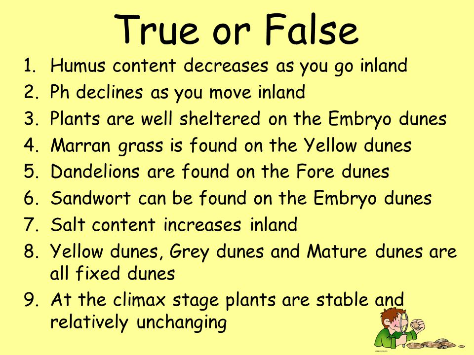 True or False 1.Humus content decreases as you go inland 2.Ph declines as you move inland 3.Plants are well sheltered on the Embryo dunes 4.Marran grass is found on the Yellow dunes 5.Dandelions are found on the Fore dunes 6.Sandwort can be found on the Embryo dunes 7.Salt content increases inland 8.Yellow dunes, Grey dunes and Mature dunes are all fixed dunes 9.At the climax stage plants are stable and relatively unchanging