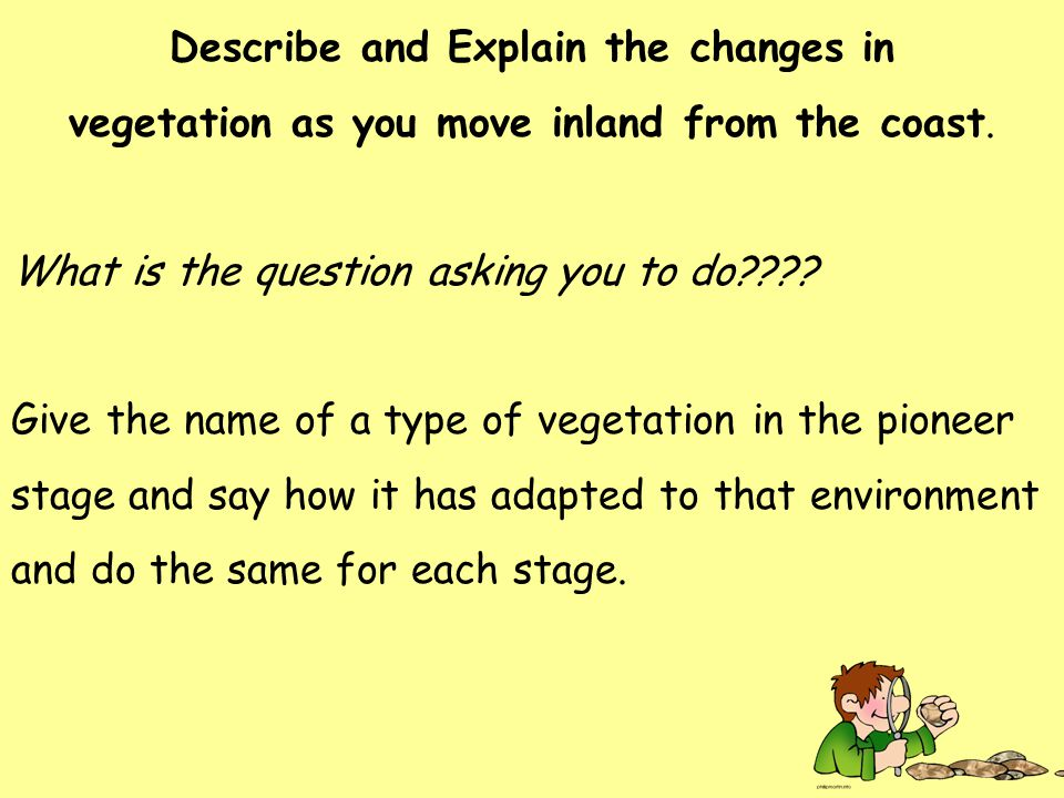 Describe and Explain the changes in vegetation as you move inland from the coast.