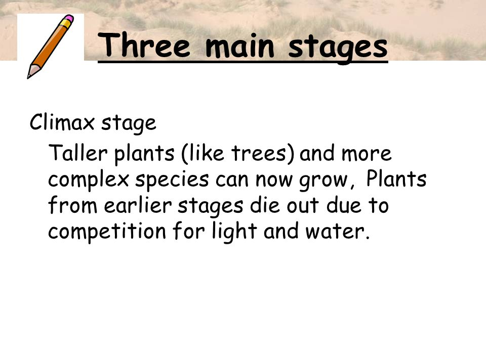 Three main stages Climax stage Taller plants (like trees) and more complex species can now grow, Plants from earlier stages die out due to competition
