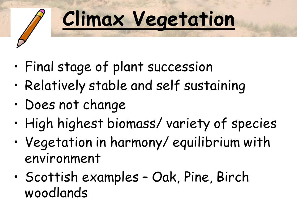 Climax Vegetation Final stage of plant succession Relatively stable and self sustaining Does not change High highest biomass/ variety of species Veget