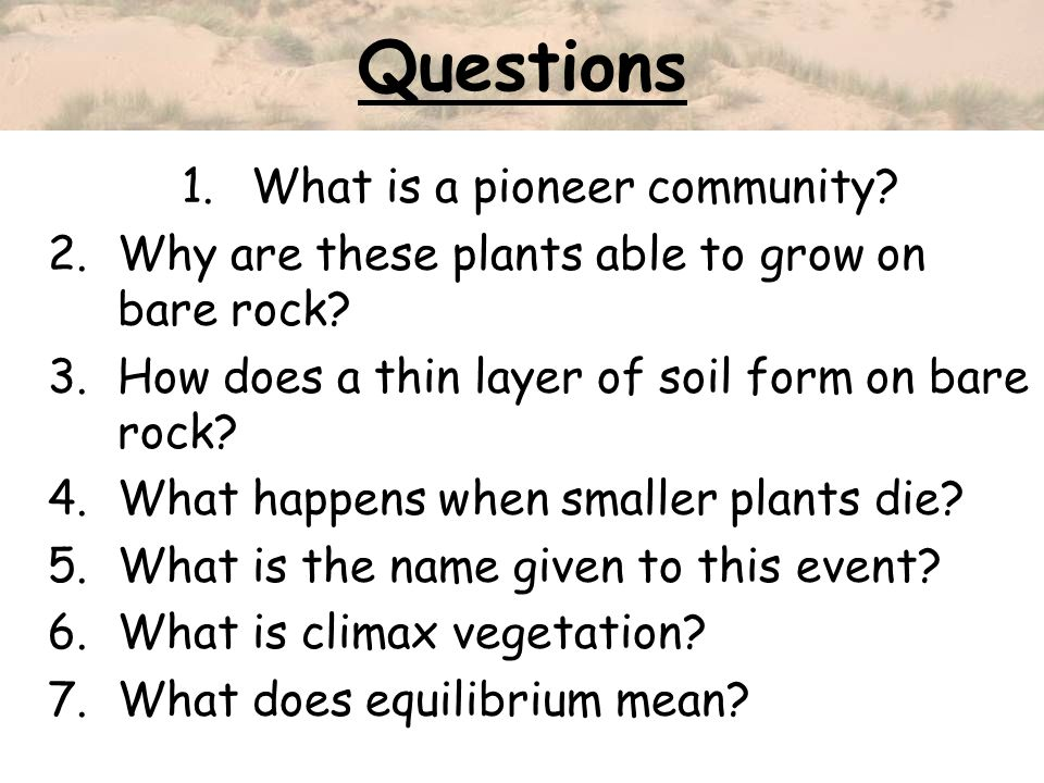 Questions 1.What is a pioneer community? 2.Why are these plants able to grow on bare rock? 3.How does a thin layer of soil form on bare rock? 4.What h