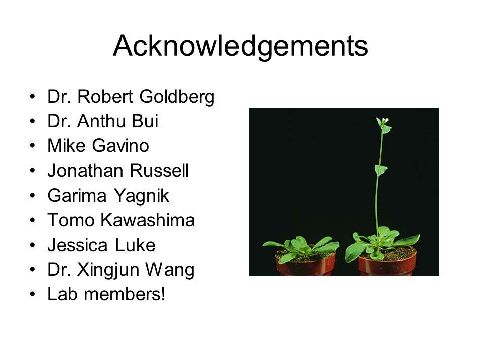 Acknowledgements Dr. Robert Goldberg Dr.