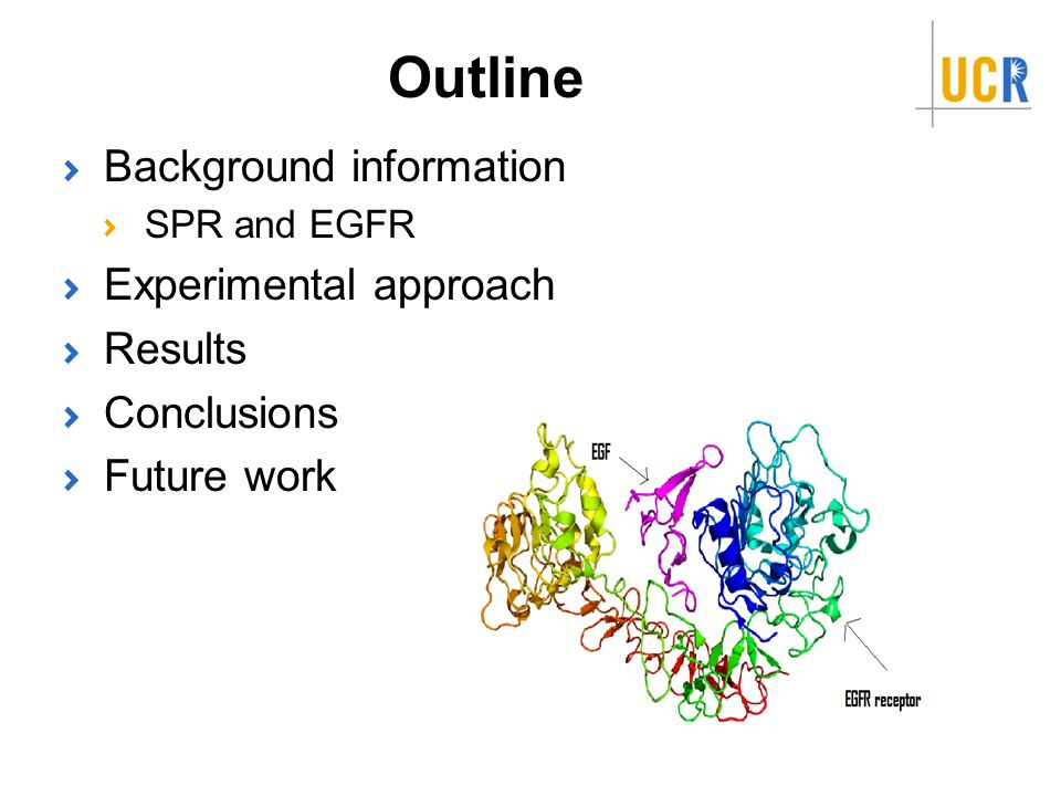 Outline Background information SPR and EGFR Experimental approach Results Conclusions Future work