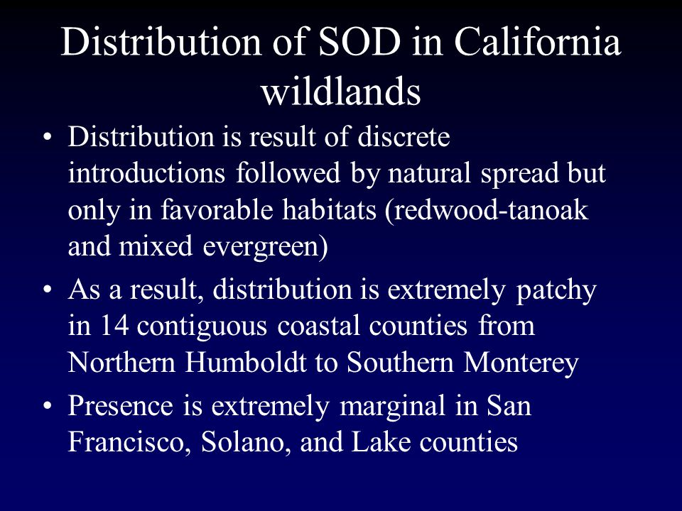 Distribution of SOD in California wildlands Distribution is result of discrete introductions followed by natural spread but only in favorable habitats (redwood-tanoak and mixed evergreen) As a result, distribution is extremely patchy in 14 contiguous coastal counties from Northern Humboldt to Southern Monterey Presence is extremely marginal in San Francisco, Solano, and Lake counties