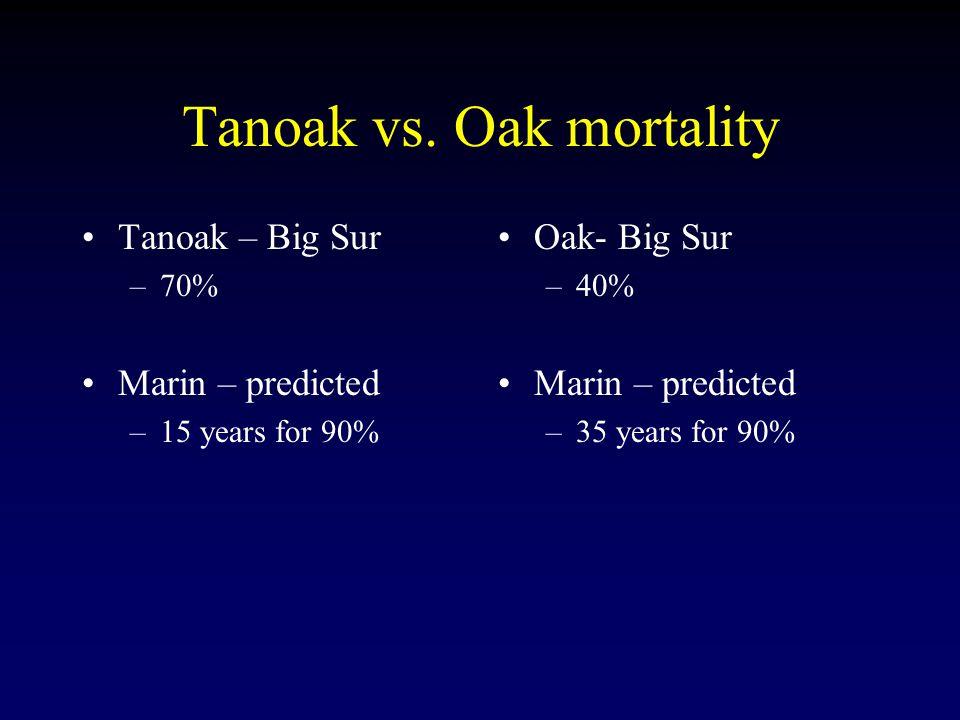 Tanoak vs.