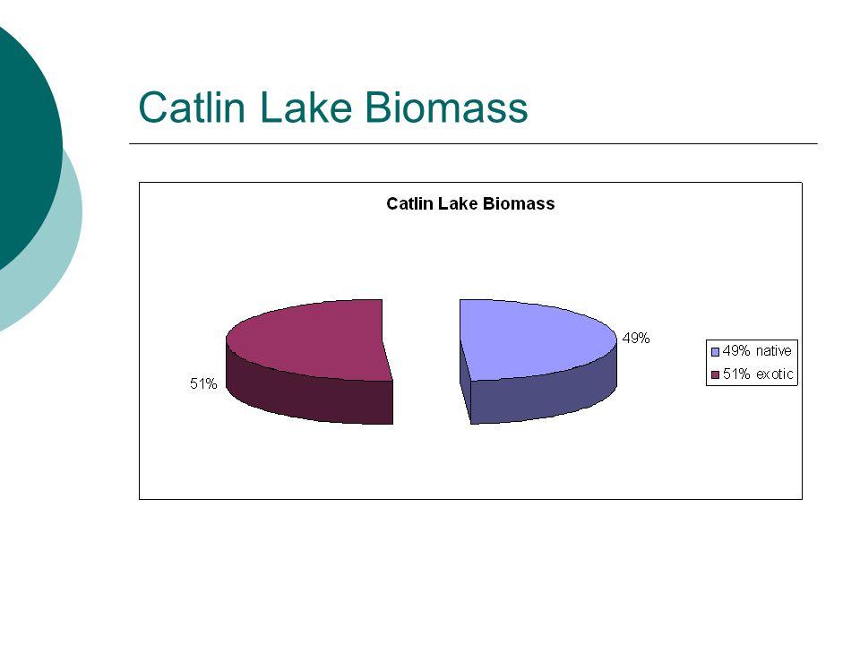 Catlin Lake Biomass