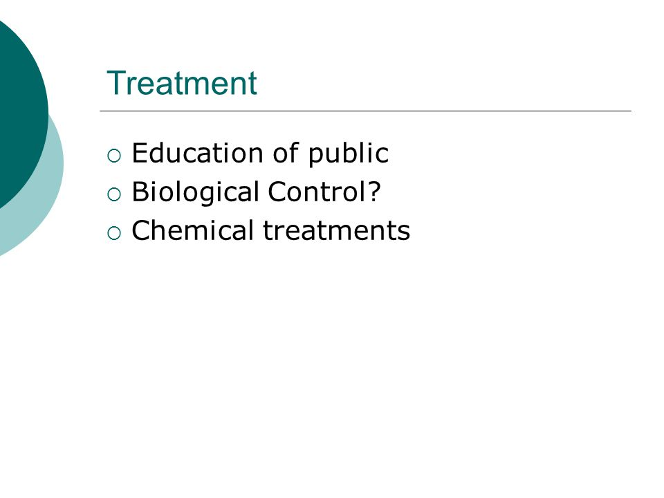 Treatment  Education of public  Biological Control?  Chemical treatments