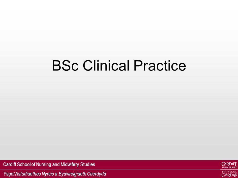 Cardiff School of Nursing and Midwifery Studies Ysgol Astudiaethau Nyrsio a Bydwreigiaeth Caerdydd BSc Clinical Practice