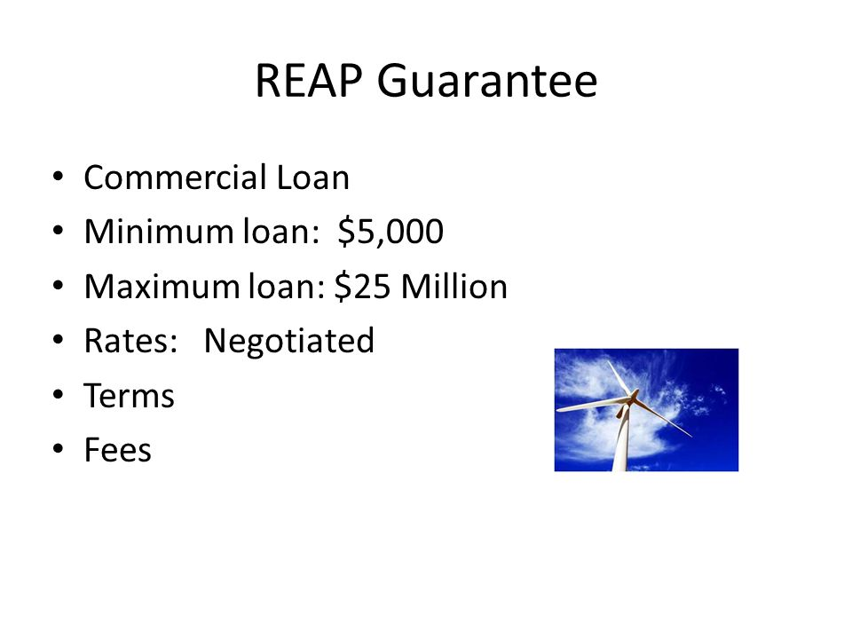 REAP Guarantee Commercial Loan Minimum loan: $5,000 Maximum loan: $25 Million Rates: Negotiated Terms Fees
