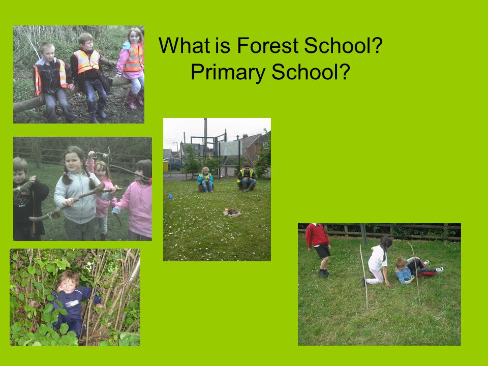 What is Forest School? Primary School?