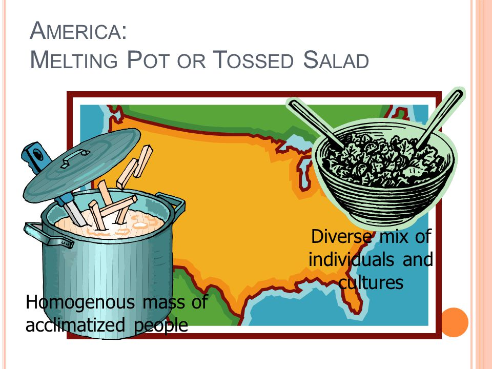 A MERICA : M ELTING P OT OR T OSSED S ALAD Homogenous mass of acclimatized people Diverse mix of individuals and cultures