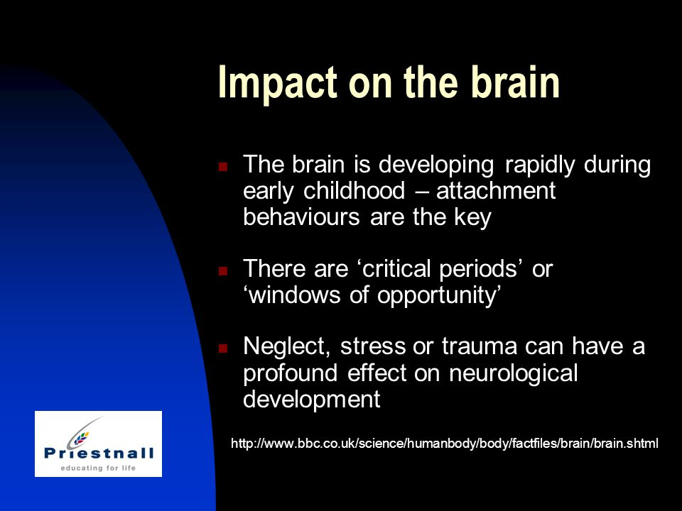 Impact on the brain The brain is developing rapidly during early childhood – attachment behaviours are the key There are 'critical periods' or 'windows of opportunity' Neglect, stress or trauma can have a profound effect on neurological development http://www.bbc.co.uk/science/humanbody/body/factfiles/brain/brain.shtml