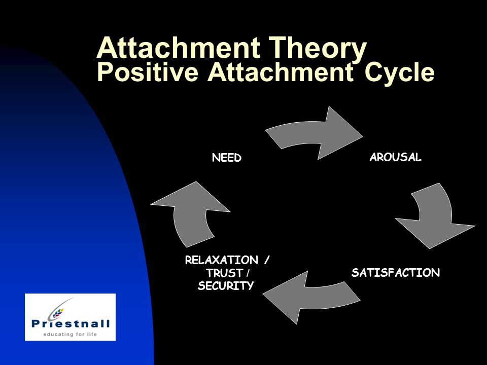 Attachment Theory Positive Attachment Cycle AROUSAL SATISFACTION RELAXATION / TRUST / SECURITY NEED