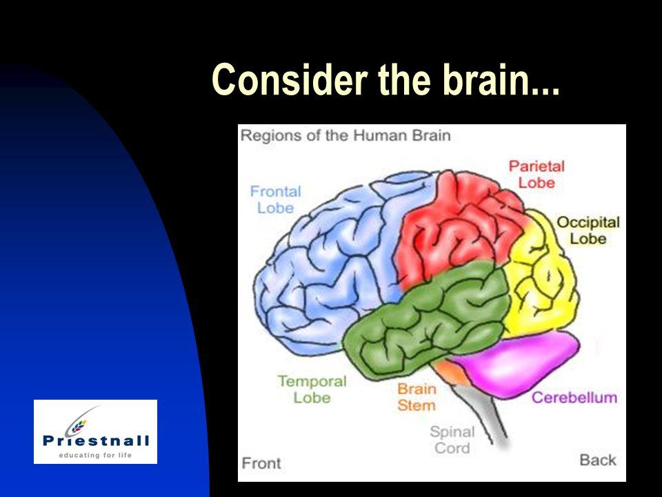 Consider the brain...