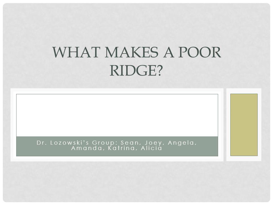 WHAT MAKES A POOR RIDGE Dr. Lozowski's Group: Sean, Joey, Angela, Amanda, Katrina, Alicia