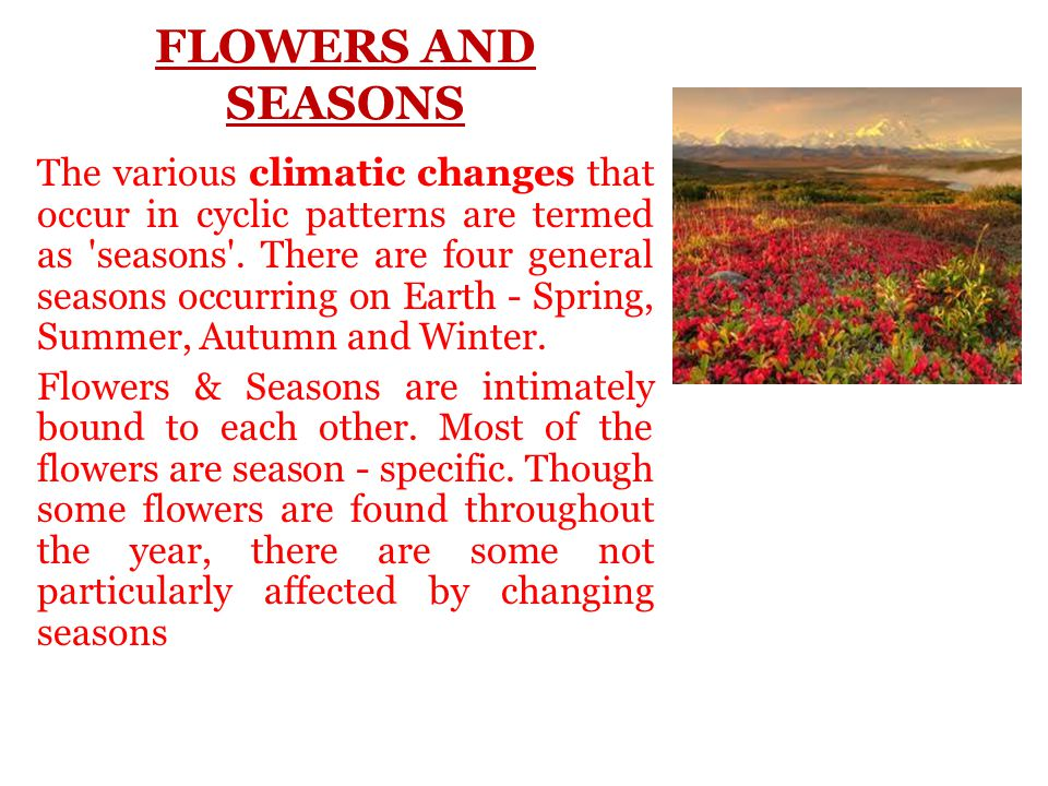 FLOWERS AND SEASONS The various climatic changes that occur in cyclic patterns are termed as seasons .
