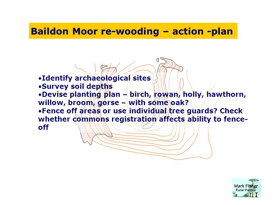 Baildon Moor re-wooding – action -plan Identify archaeological sites Survey soil depths Devise planting plan – birch, rowan, holly, hawthorn, willow, broom, gorse – with some oak.