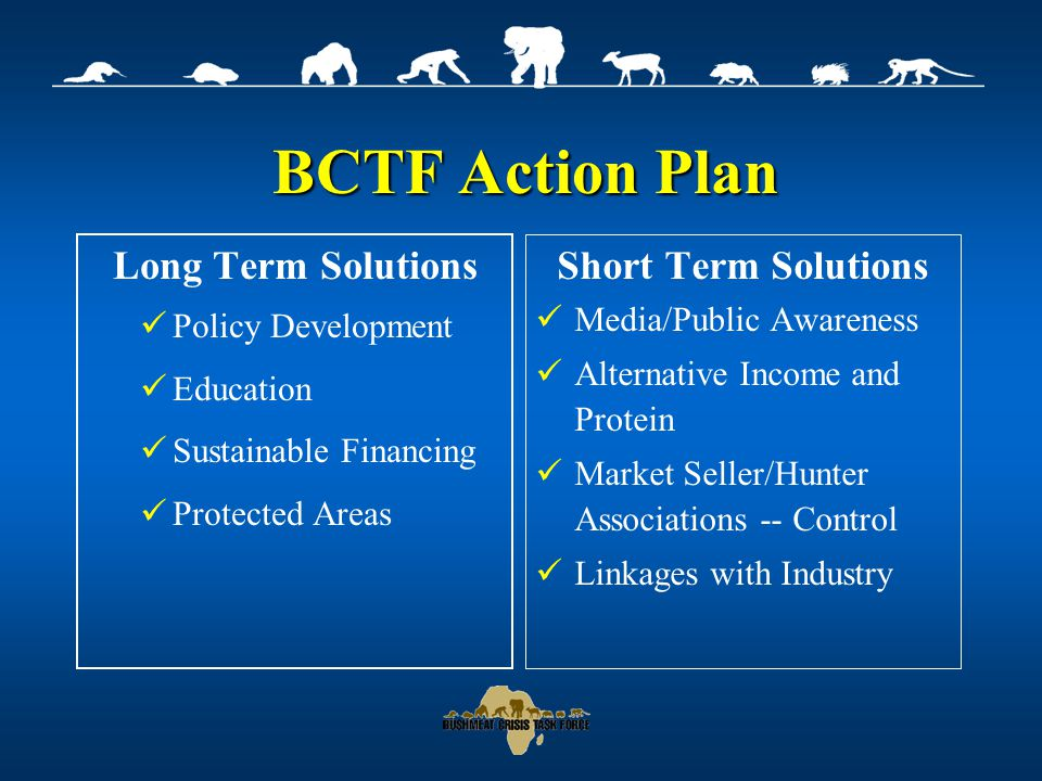 BCTF Action Plan Long Term Solutions Policy Development Education Sustainable Financing Protected Areas Short Term Solutions Media/Public Awareness Alternative Income and Protein Market Seller/Hunter Associations -- Control Linkages with Industry