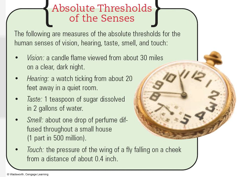 2. Absolute Threshold Weakest amount of a stimulus that can be distinguished from no stimulus at all –Detected 50% of the time