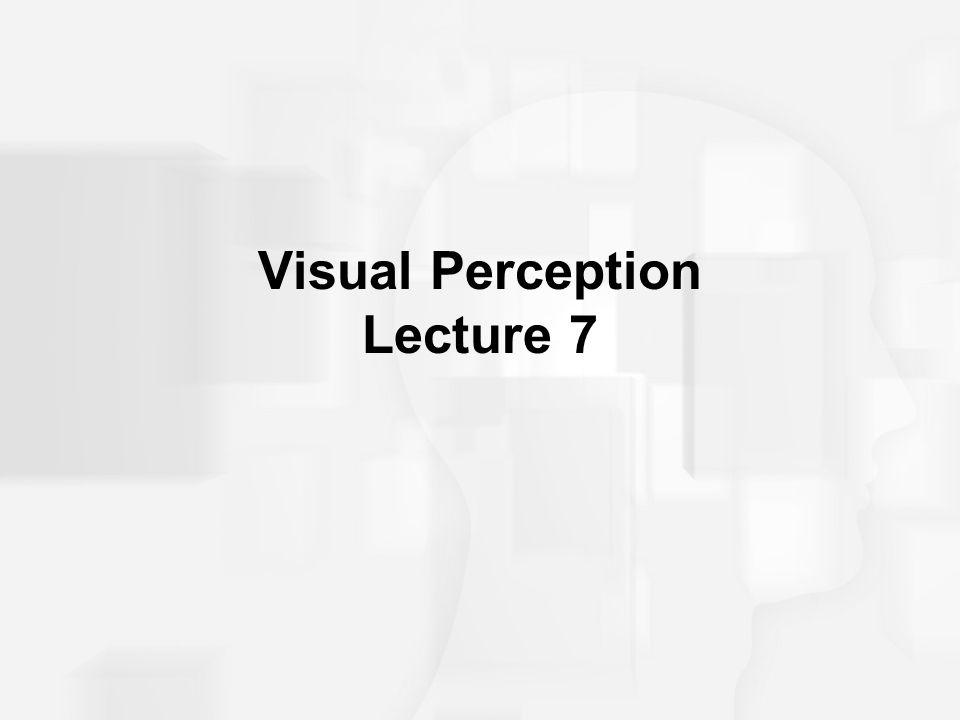 Visual Perception Lecture 7