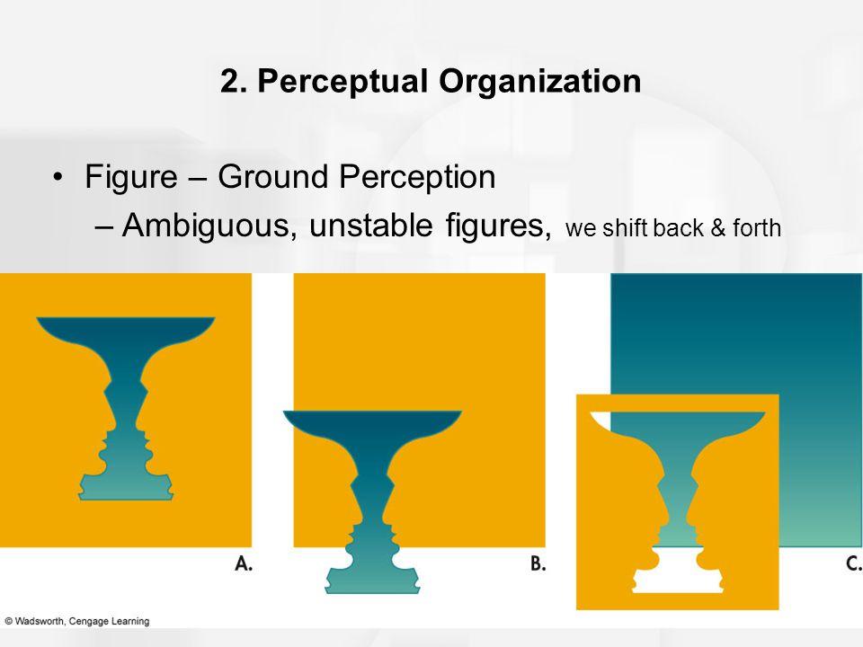 2. Perceptual Organization Figure – Ground Perception –Ambiguous, unstable figures, we shift back & forth