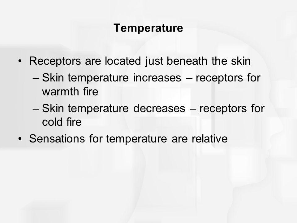 Temperature Receptors are located just beneath the skin –Skin temperature increases – receptors for warmth fire –Skin temperature decreases – receptor