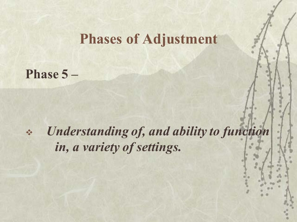 Phases of Adjustment Phase 5 –  Understanding of, and ability to function in, a variety of settings.