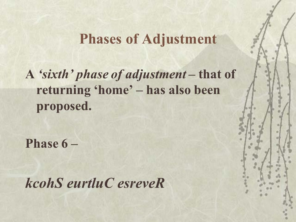Phases of Adjustment A 'sixth' phase of adjustment – that of returning 'home' – has also been proposed.