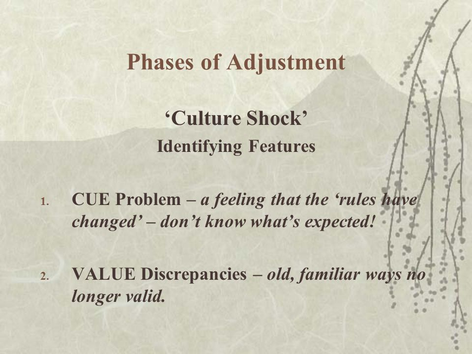 Phases of Adjustment 'Culture Shock' Identifying Features 1.