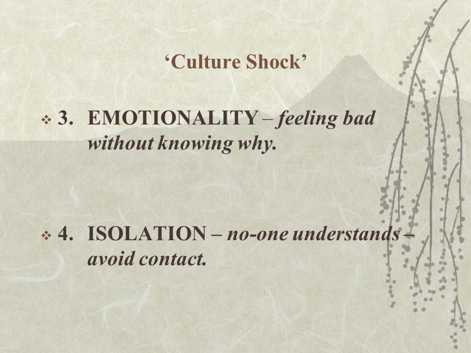 'Culture Shock'  3.EMOTIONALITY – feeling bad without knowing why.