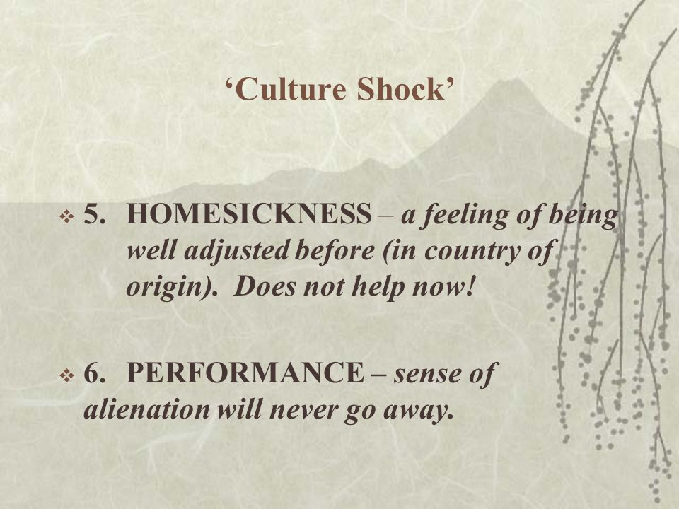 'Culture Shock'  5.HOMESICKNESS – a feeling of being well adjusted before (in country of origin).
