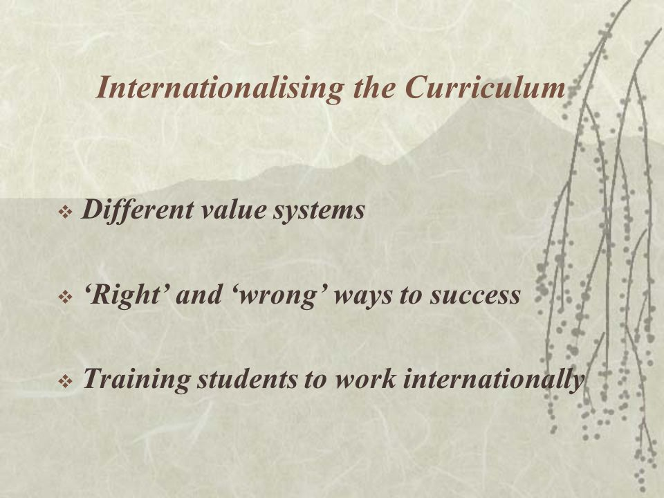Internationalising the Curriculum  Different value systems  'Right' and 'wrong' ways to success  Training students to work internationally