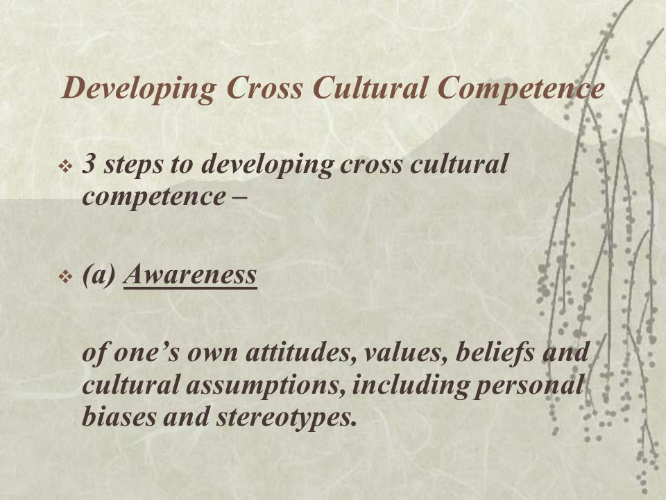 Developing Cross Cultural Competence  3 steps to developing cross cultural competence –  (a)Awareness of one's own attitudes, values, beliefs and cultural assumptions, including personal biases and stereotypes.