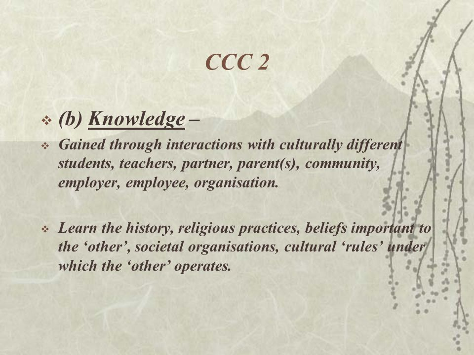 CCC 2  (b)Knowledge –  Gained through interactions with culturally different students, teachers, partner, parent(s), community, employer, employee, organisation.