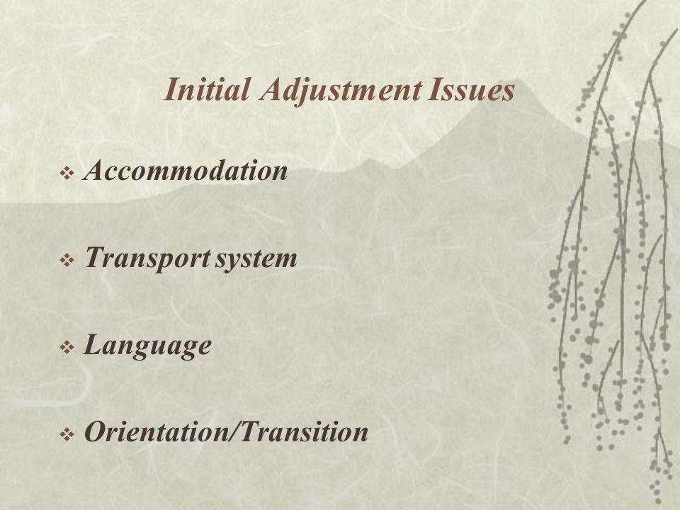 Initial Adjustment Issues  Accommodation  Transport system  Language  Orientation/Transition