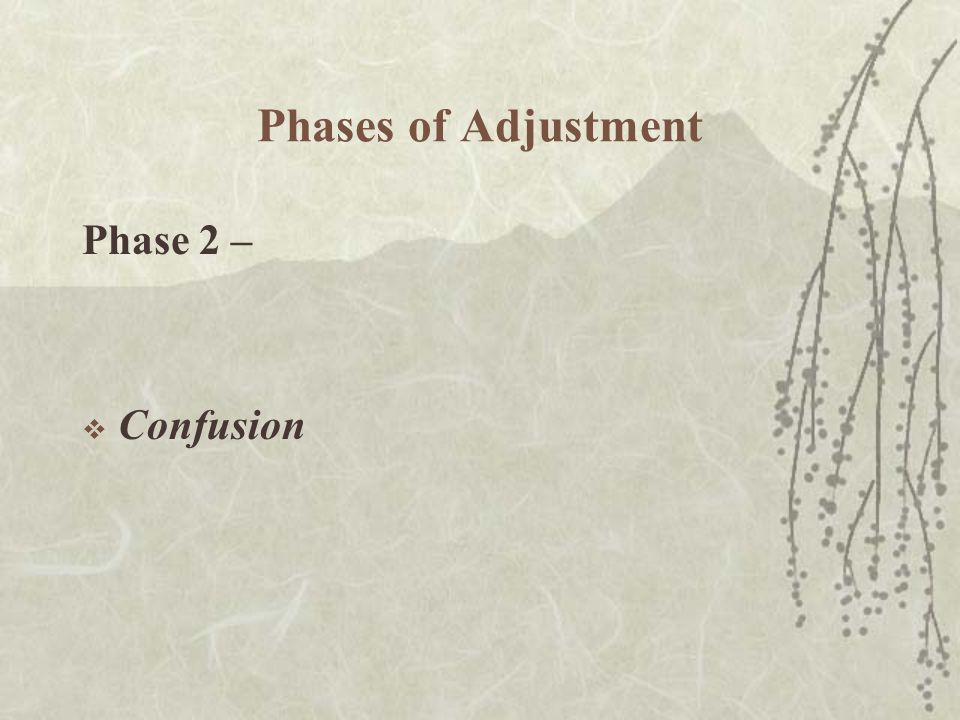 Phases of Adjustment Phase 2 –  Confusion