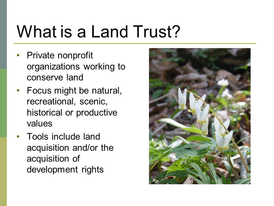 What is a Land Trust? Private nonprofit organizations working to conserve land Focus might be natural, recreational, scenic, historical or productive